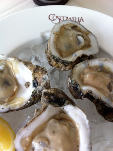 Texas oysters