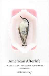 americanafterlife