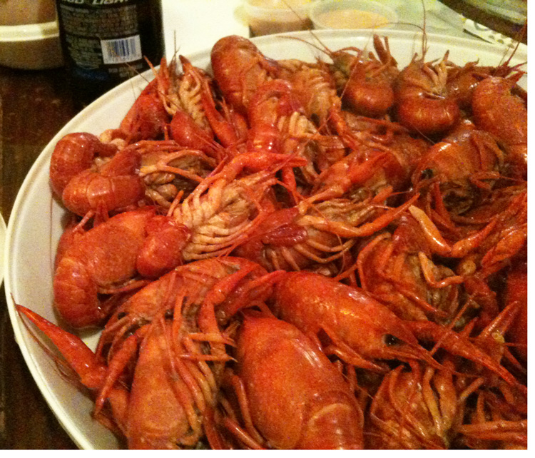 Spotlight on the Cajun Crustacean