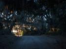 Snapshot of Savannah: Conrad Aiken