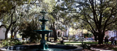 Fall For Literary Savannah