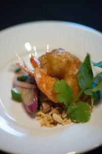 corybahrshrimp