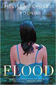 Flood by Melissa Scholes Young